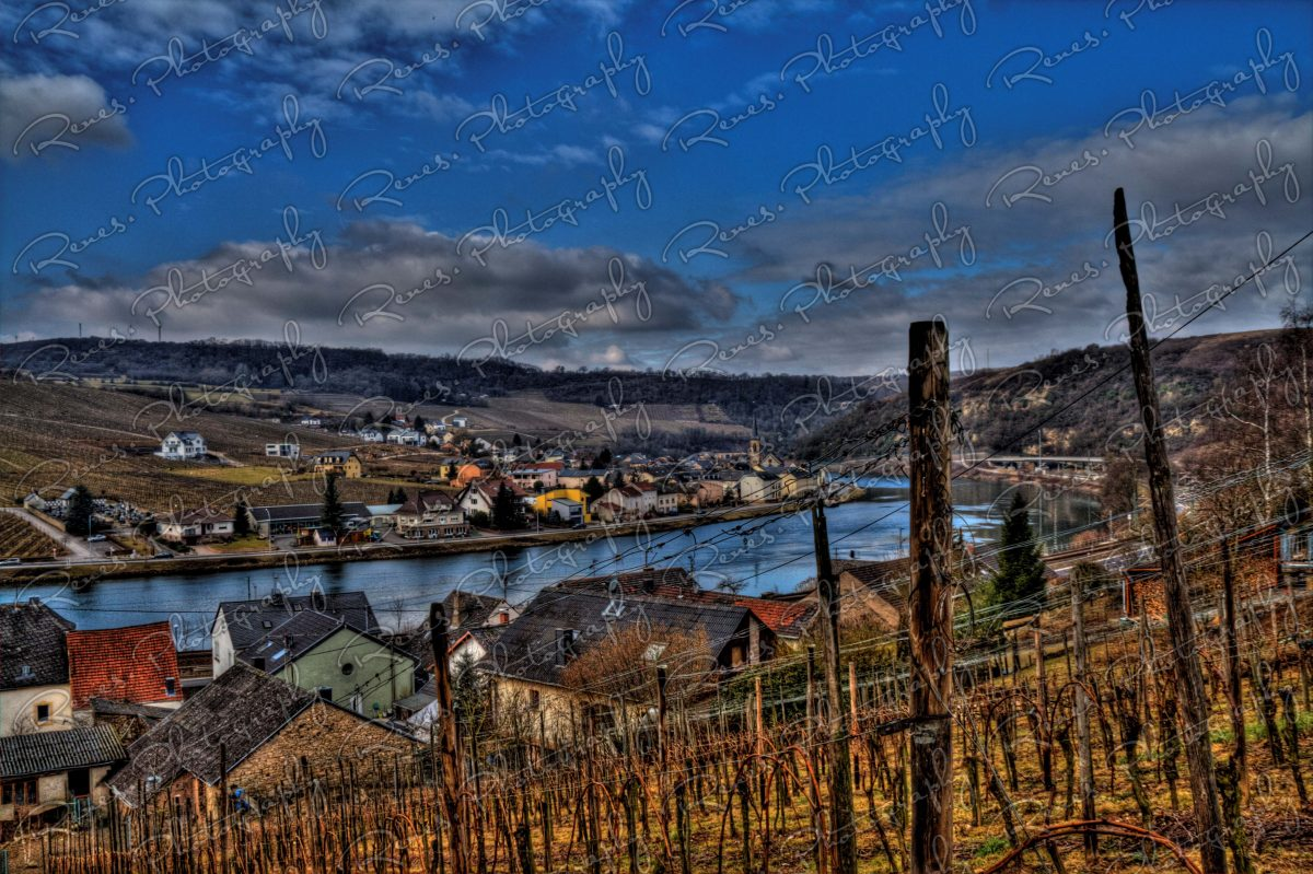 Nittel at the Moselle River 2 scaled