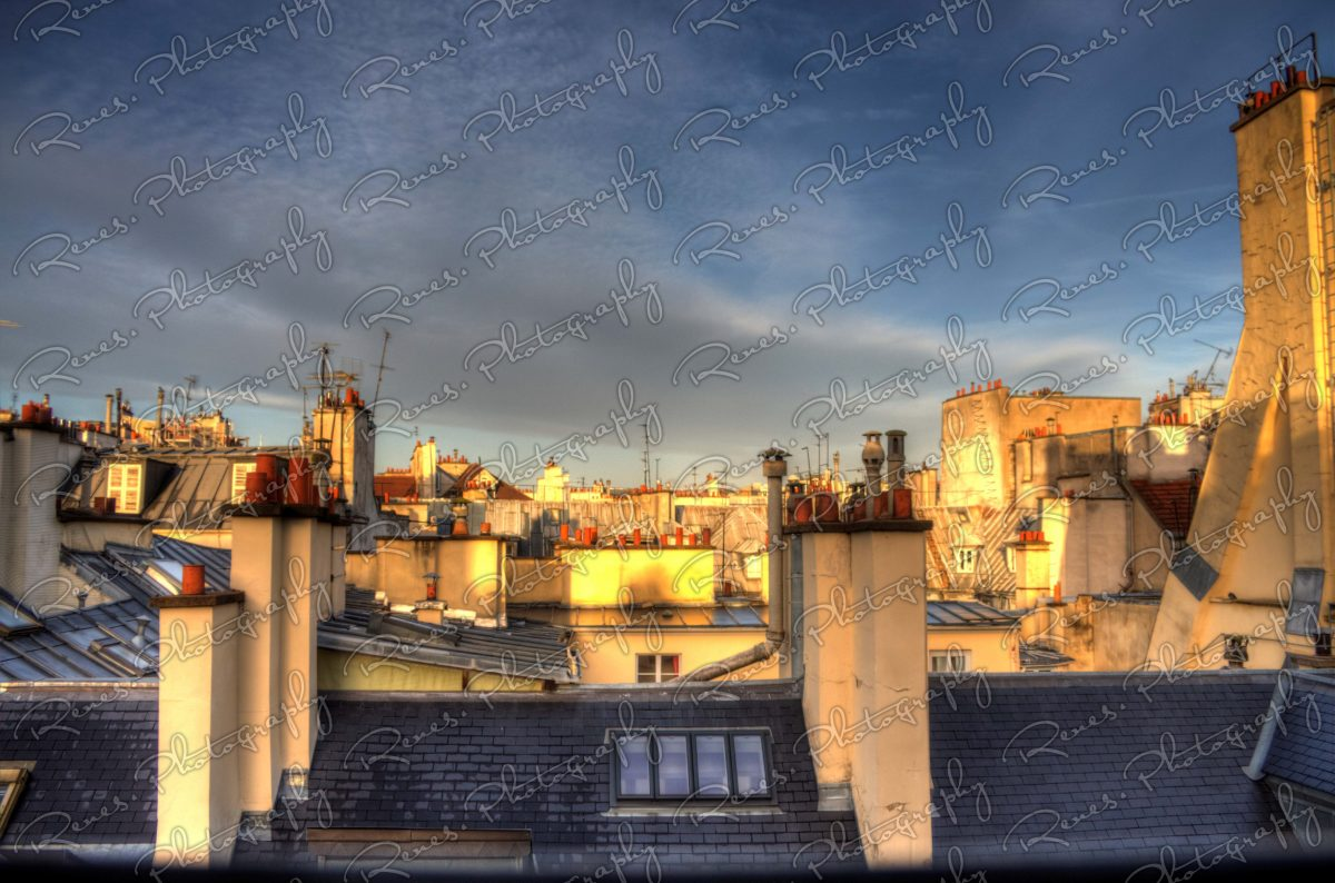 Roofs of Paris 1 scaled